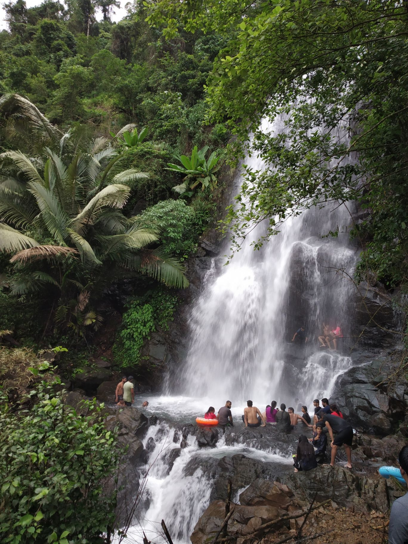 Photo of Kappimala Waterfalls By experiential kannur