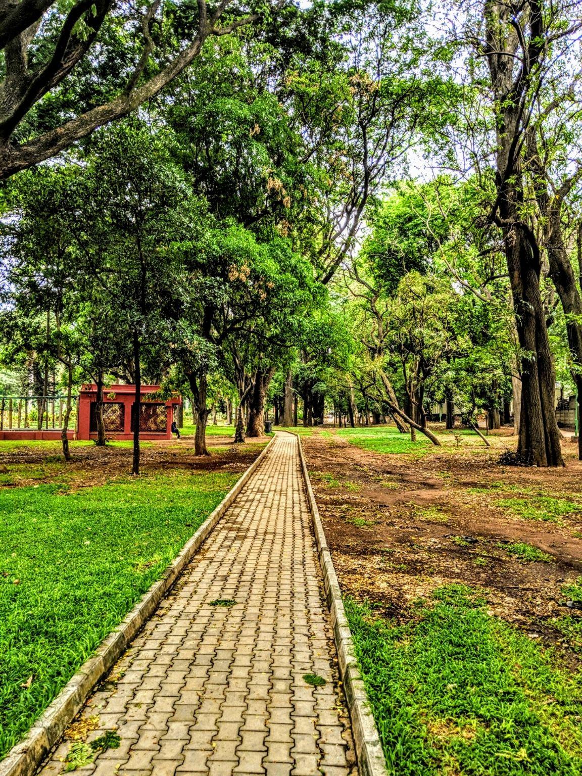 Photo of Cubbon Park By Vivek Shah