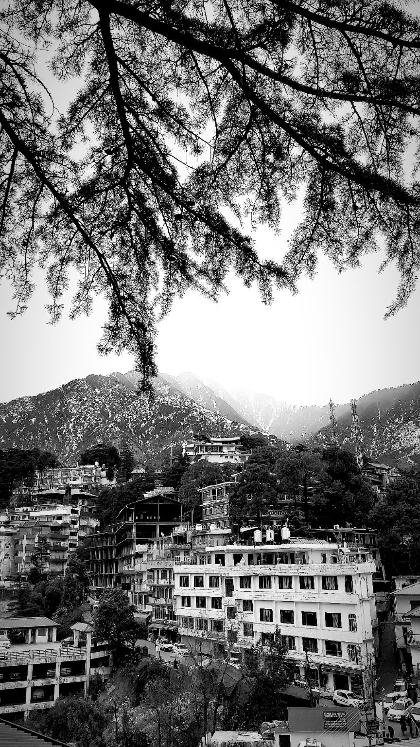 Photo of Dharamshala By Jalaj Dahra