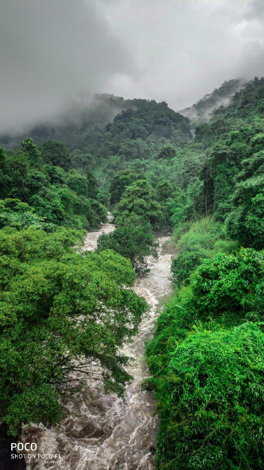 Photo of Thusharagiri Waterfalls By Akhil Prasannan