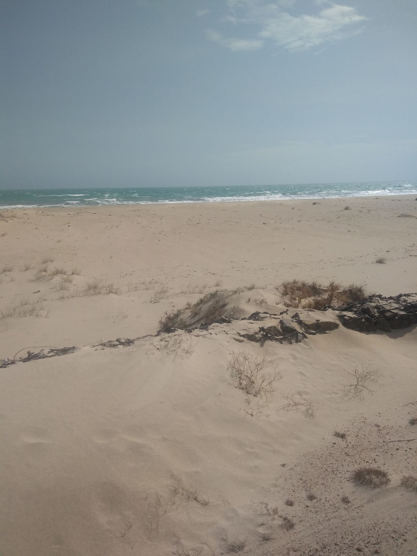 Photo of Dhanushkodi Beach By Tocy Thomas
