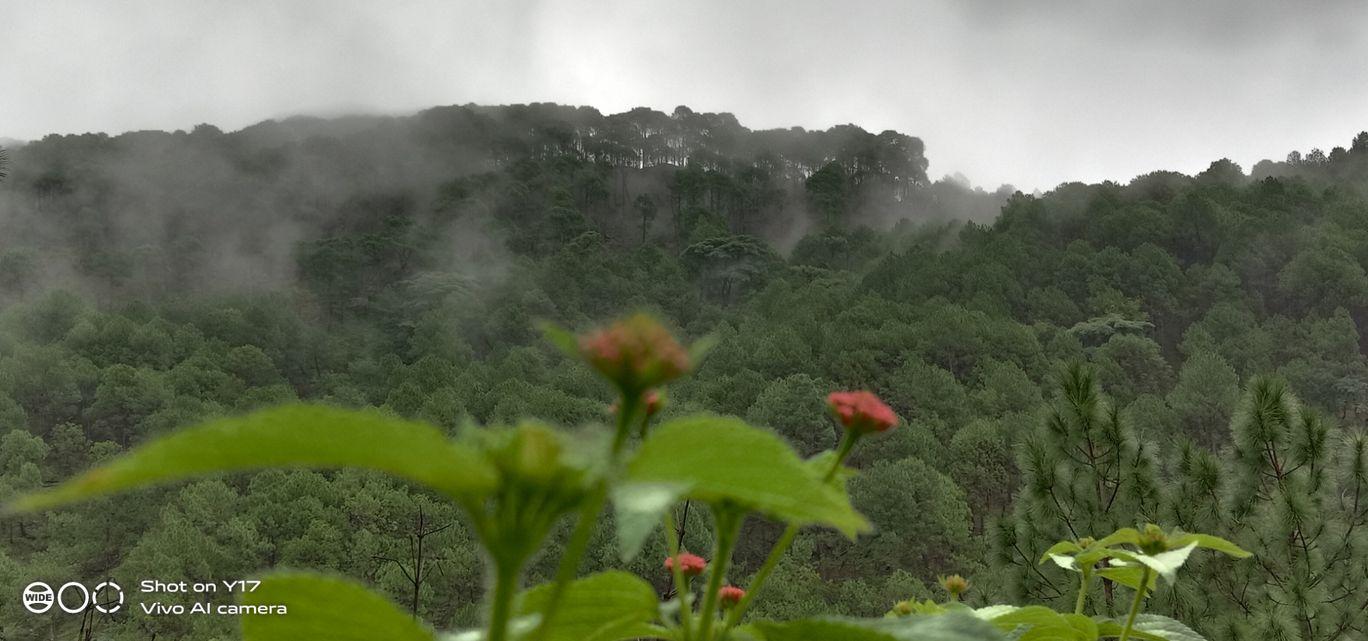 Photo of Himachal Pradesh By guleria532