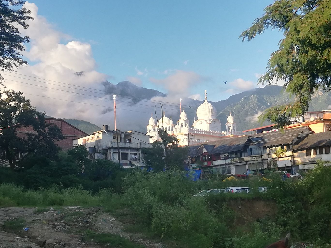 Photo of Palampur By rohit rana