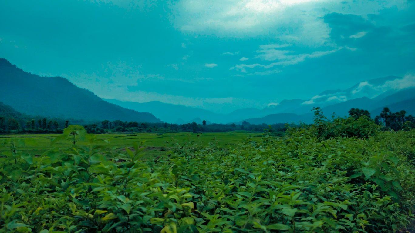 Photo of Devarapalli Water Plant By GUPTHA K.V