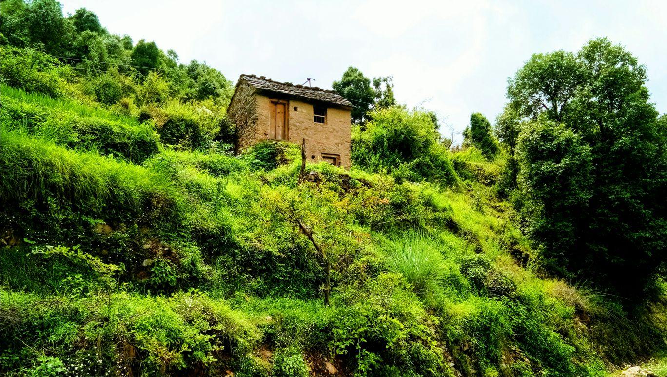Photo of Pratapnagar By Mohit Bhatt