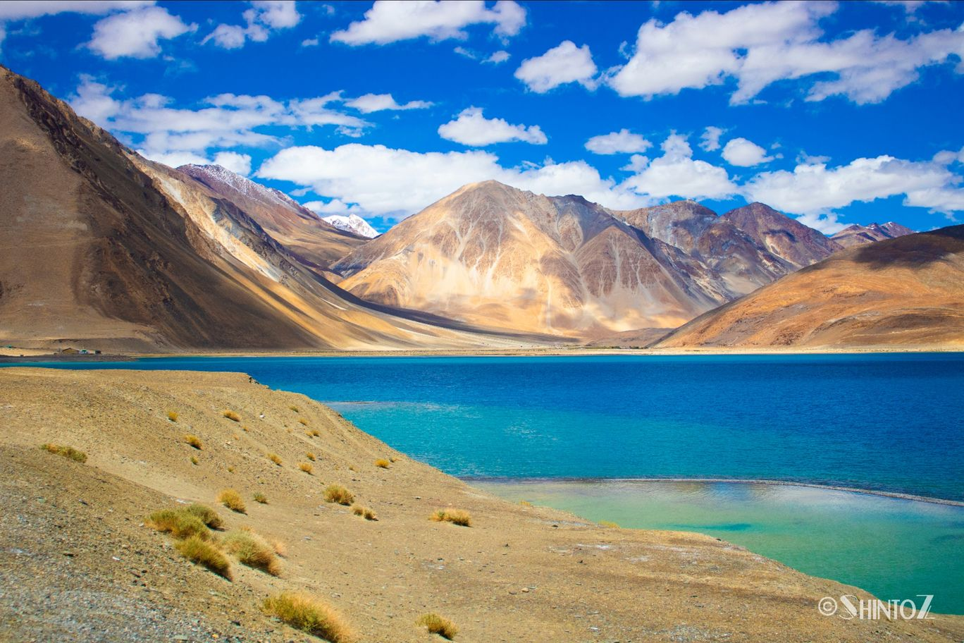 Photo of Pangong Tso By shinto philip