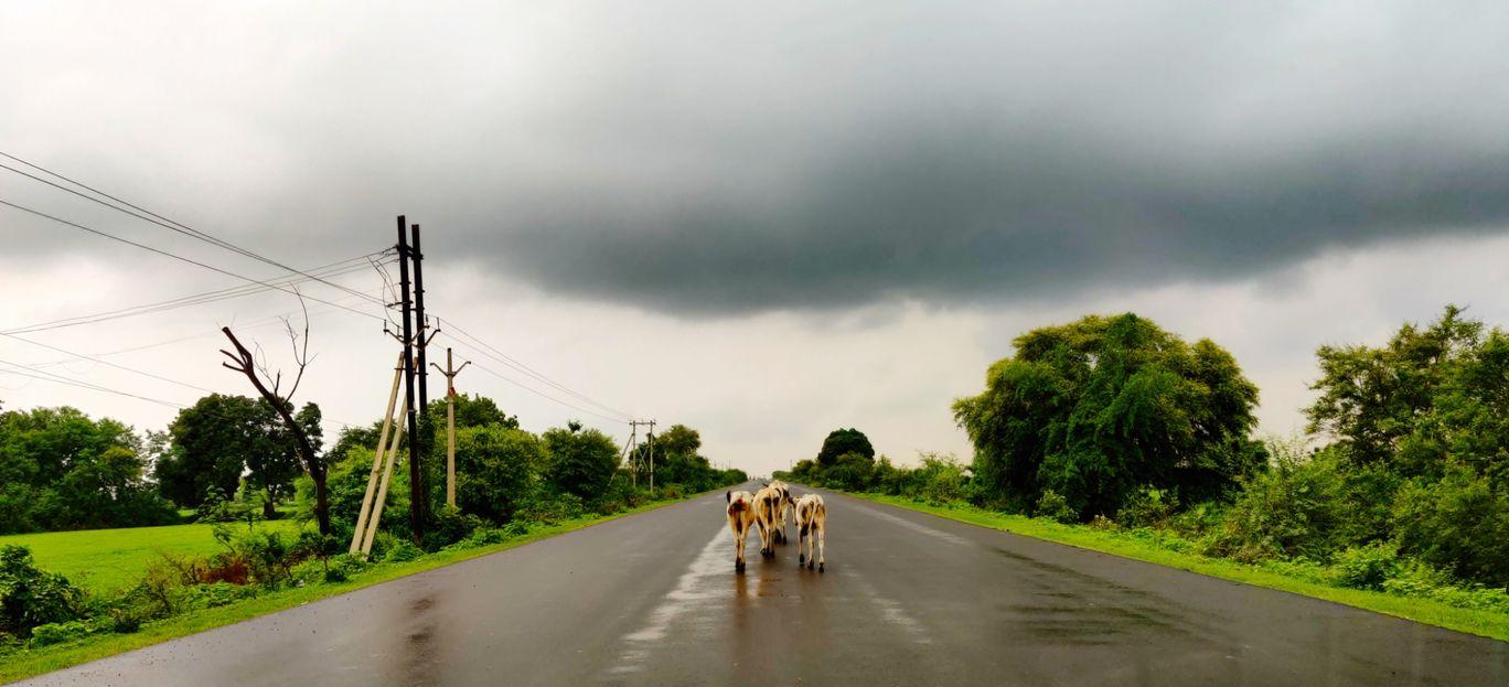 Photo of Panna National Park By Akash Batra