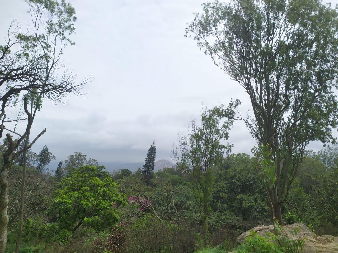 Photo of Nandi Hills By Poonam Talukdar