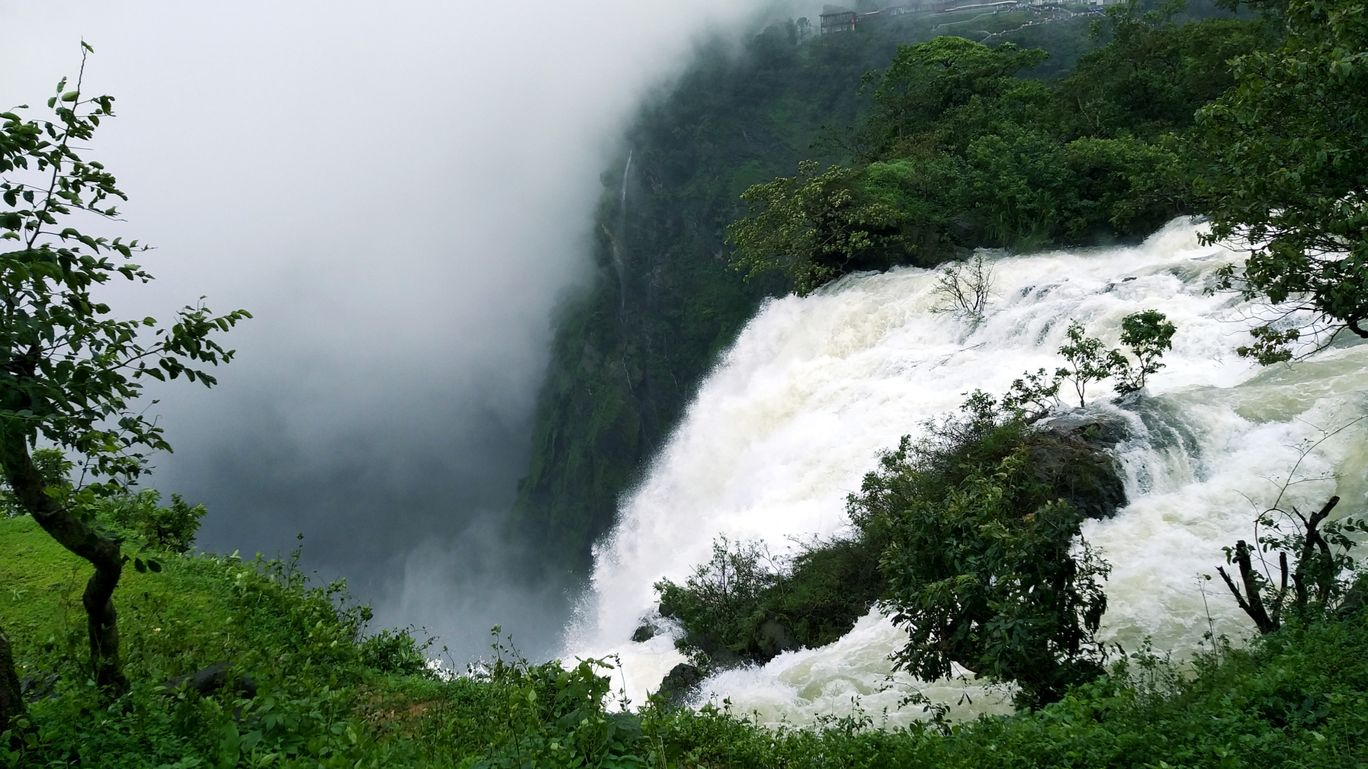 Photo of Jog Falls By Ajay Rao C R