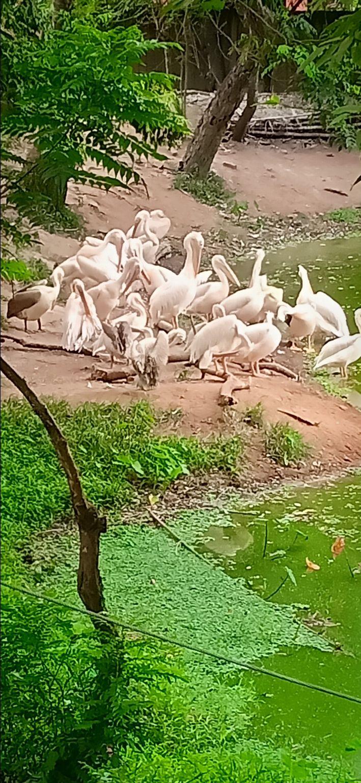 Photo of Guwahati By sandeep kumar