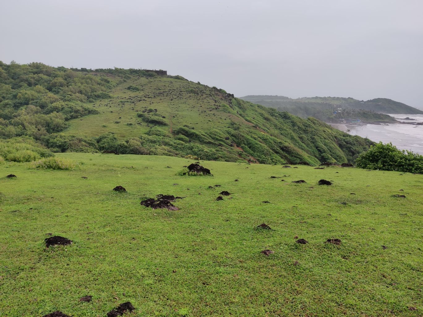 Photo of Chapora Fort By Khushboo Shukla