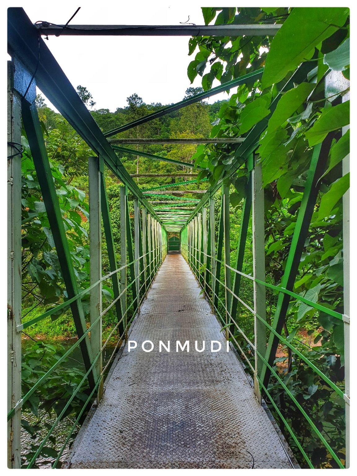 Photo of Ponmudi Hill Station By Gautham S