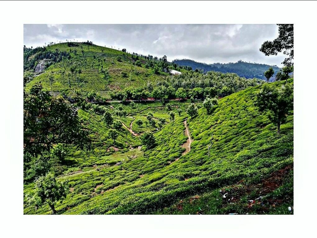 Photo of Nilgiri Hills By Sbk_kc