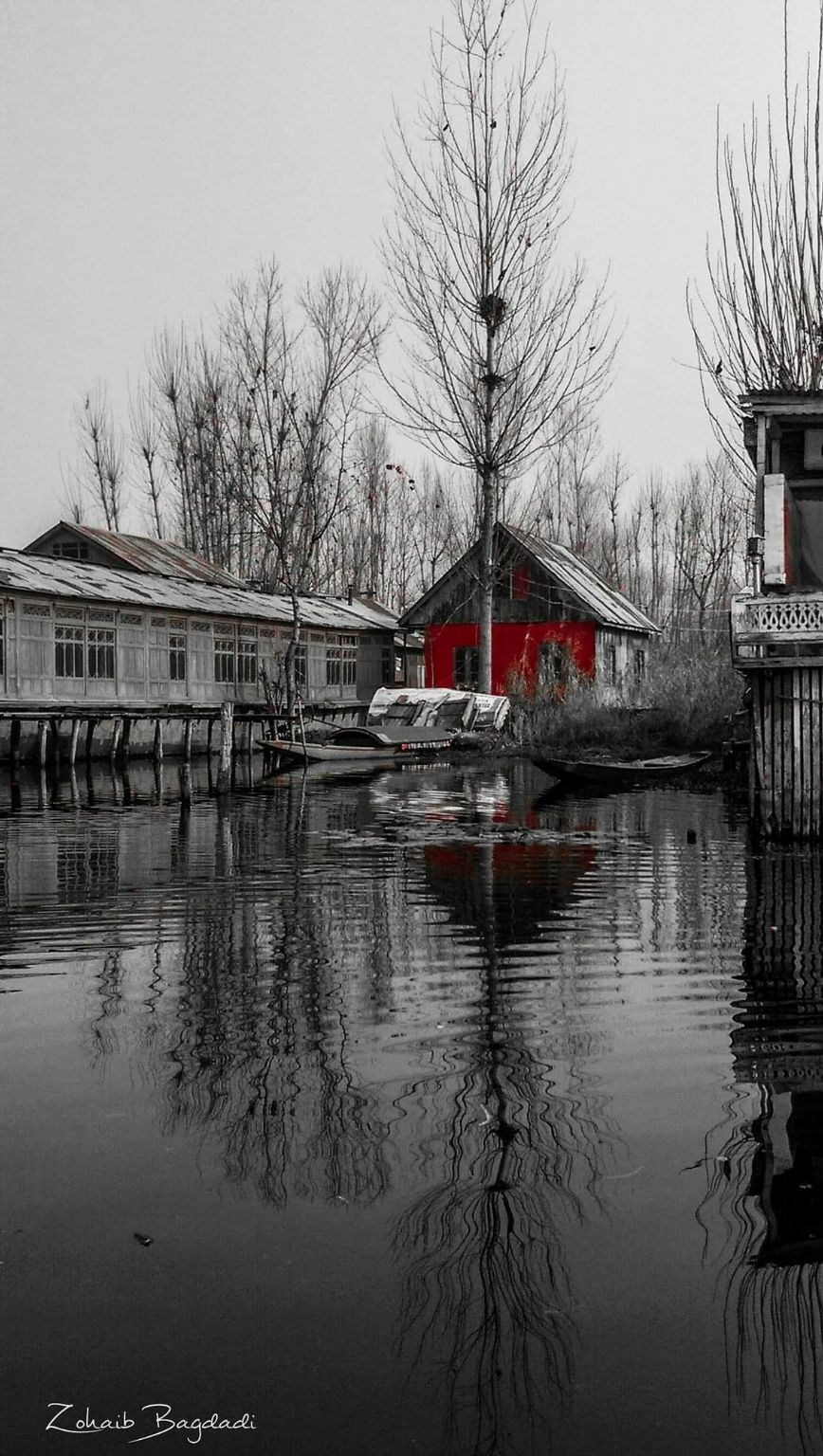 Photo of Dal Lake By Zohaib Bagdadi
