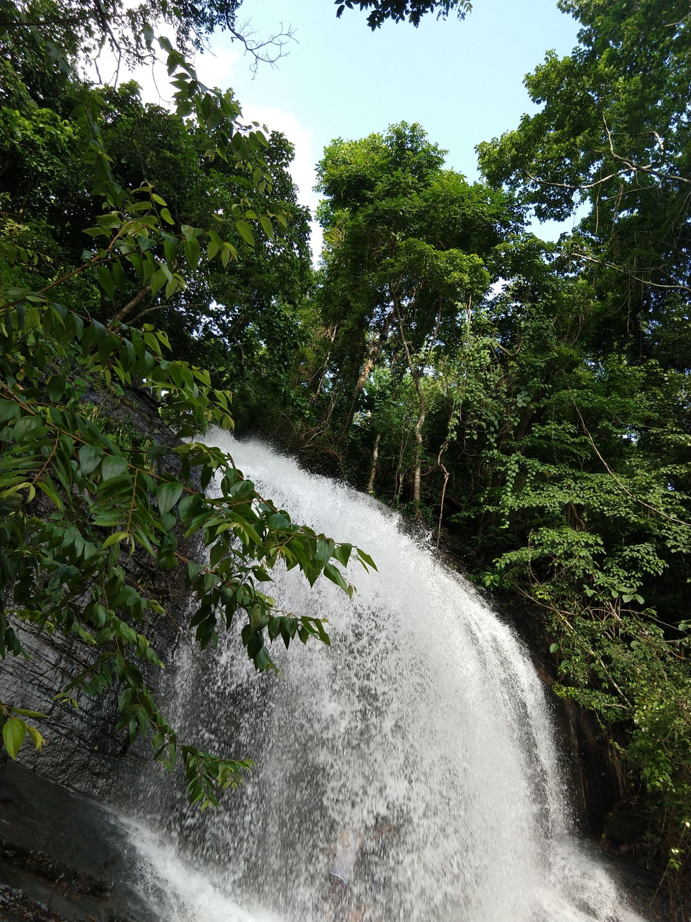 Photo of Pattathippara Water Falls (Entry Restricted Forest Area) By Arun Kumar