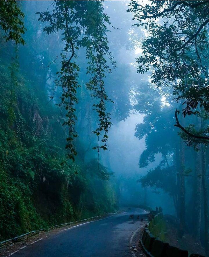 Photo of Darjeeling By Anushka Singh