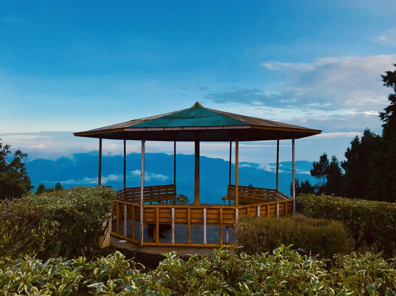 Photo of Darjeeling By Debasmita Ghosh