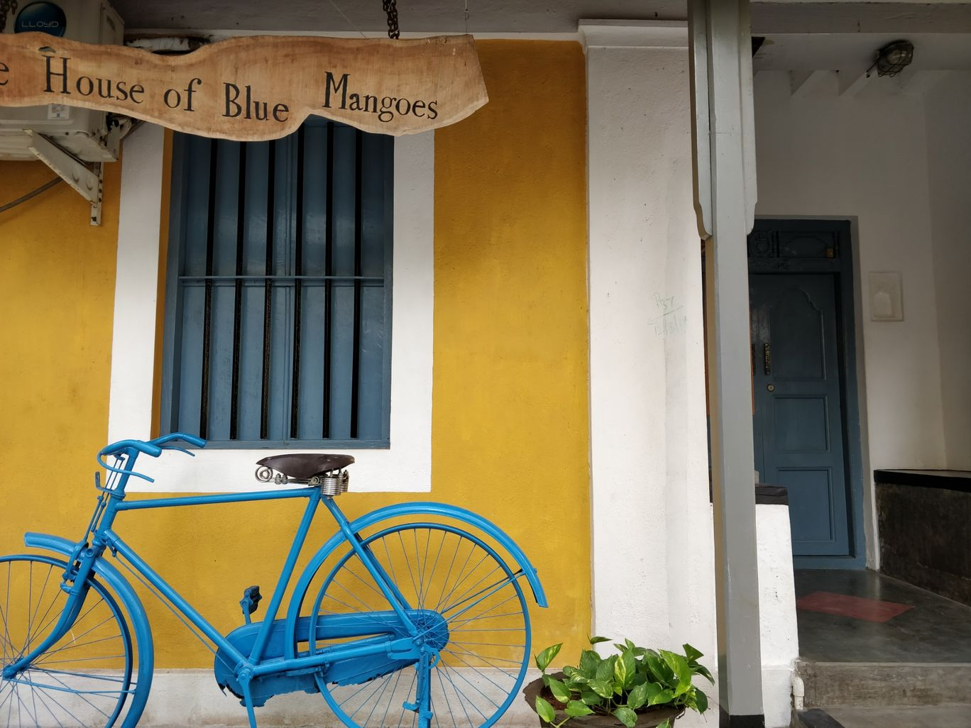 Photo of The House of Blue Mangoes By vijay kalidas