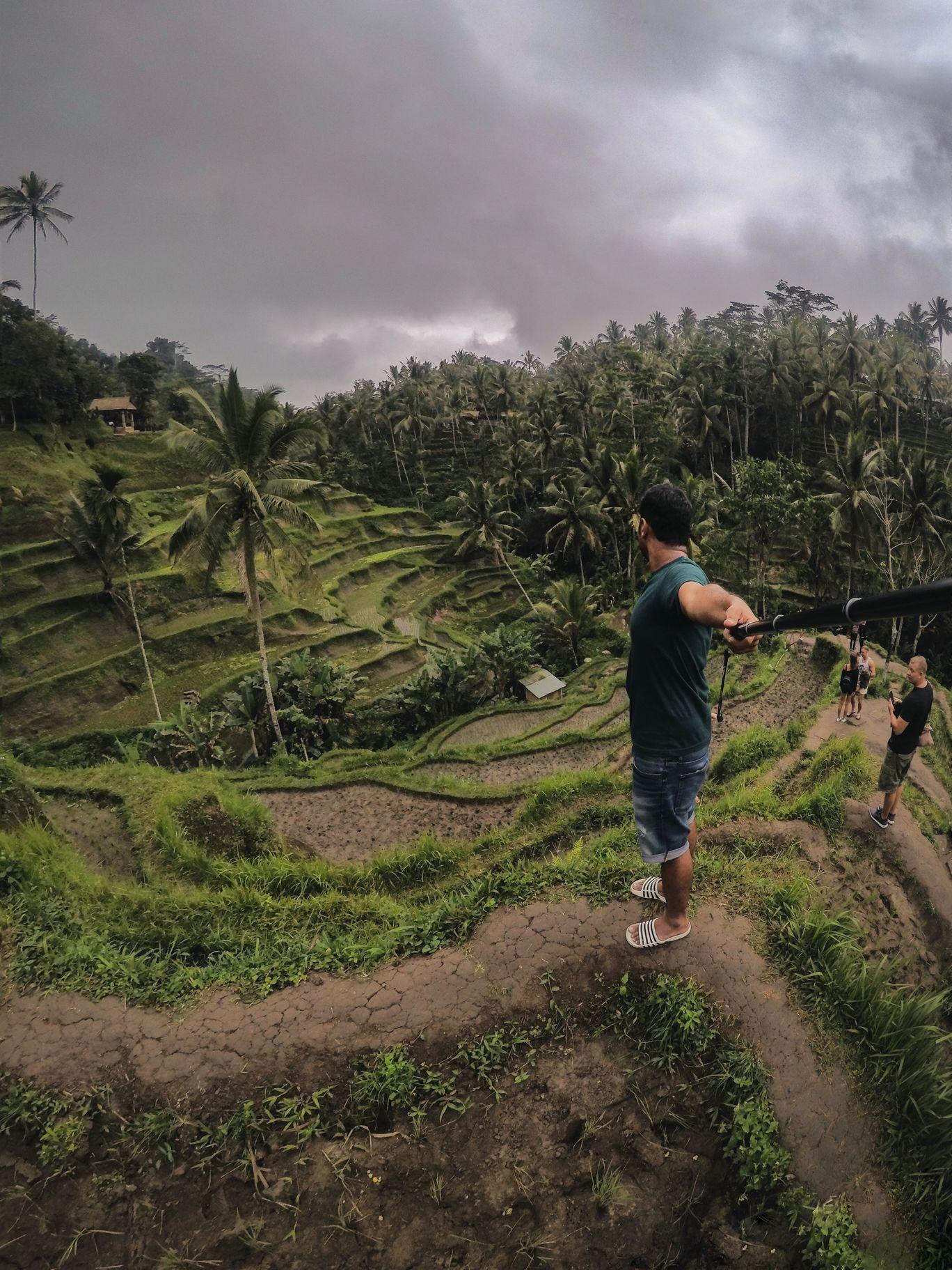 Photo of Tegallalang Rice Terrace By Akash Agarwal