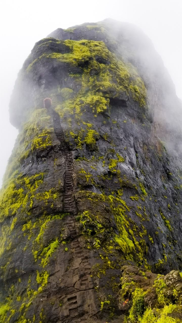 Photo of Harihar Fort By Salih Mohammed