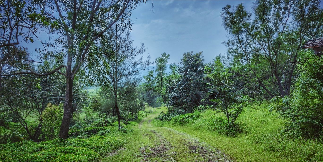Photo of Amba Ghat By Prachi More