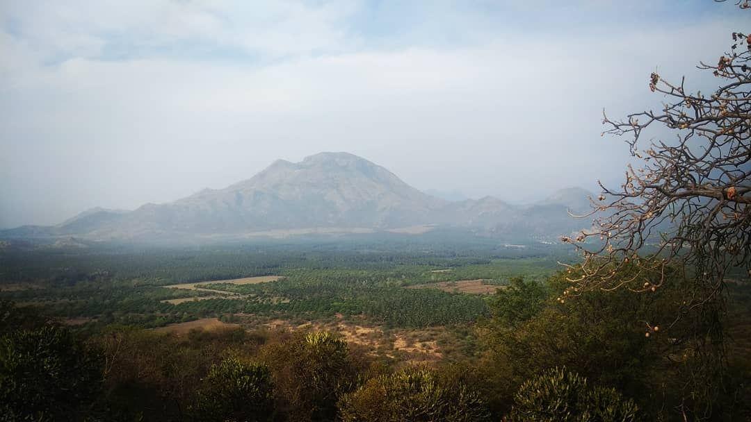 Photo of Kodaikanal hill station By Vibin Kumar