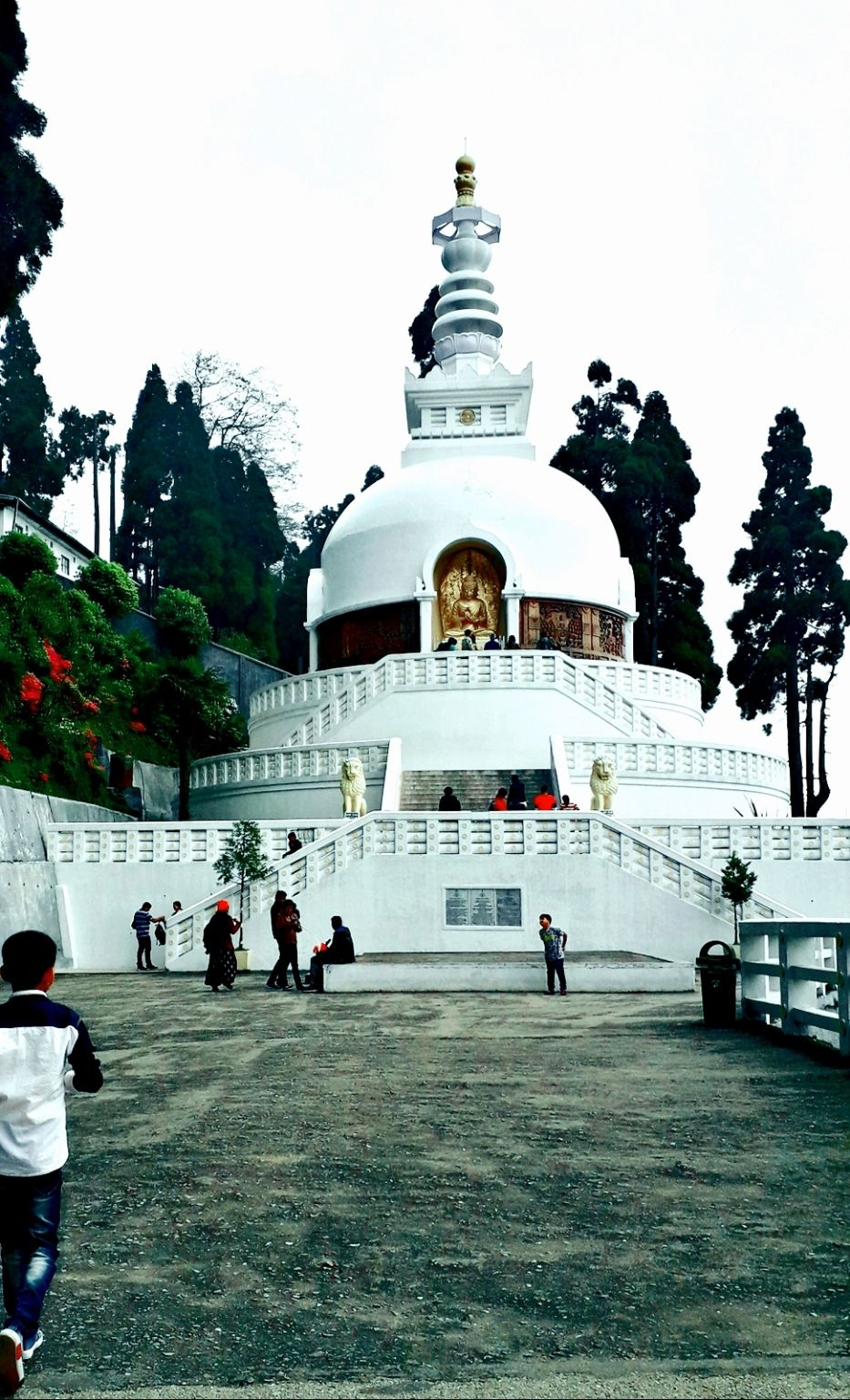 Photo of Darjeeling By INDIA'S BEAUTY
