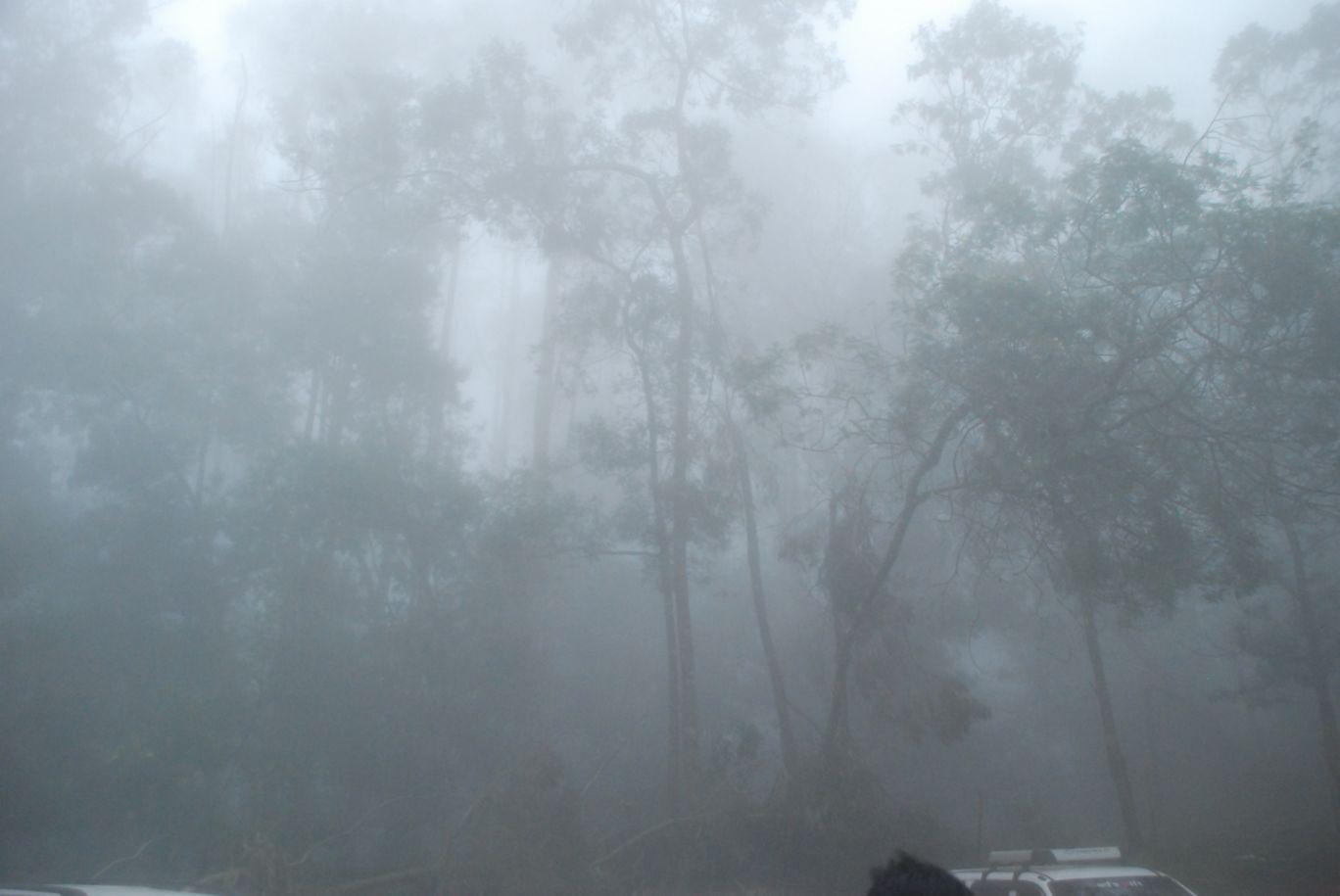 Photo of Kodaikanal hill station By Evil Lovers Life