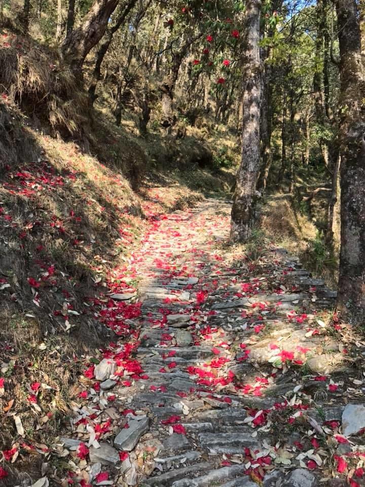 Photo of Mukteshwar By Enchanted Hills
