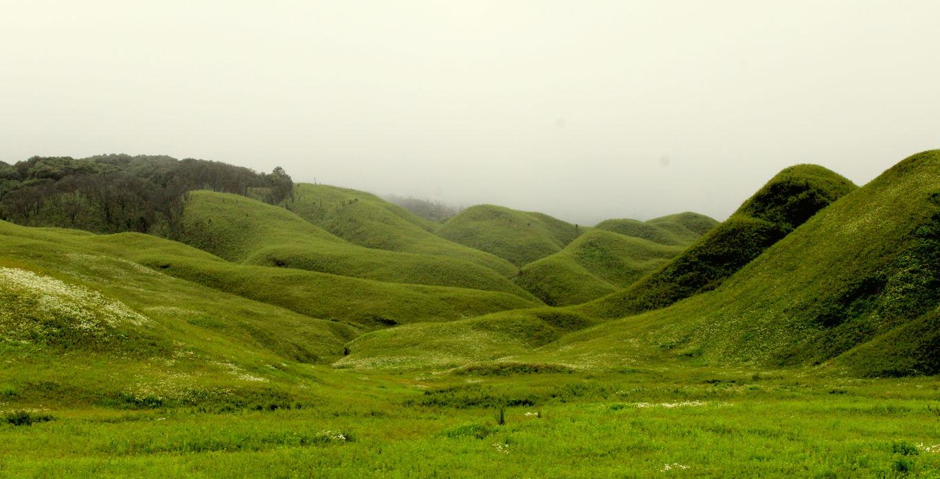 Photo of Dzükou Valley Trek By MONALISA DUTTA