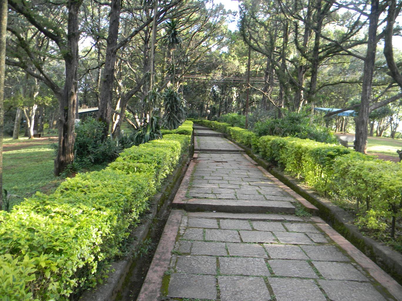 Photo of Nandi Hills By Chaitali Chatterjee