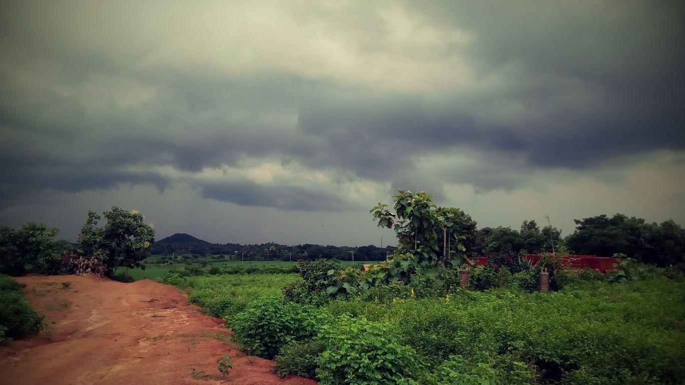 Photo of Sumandal By Subrat Kumar Gouda