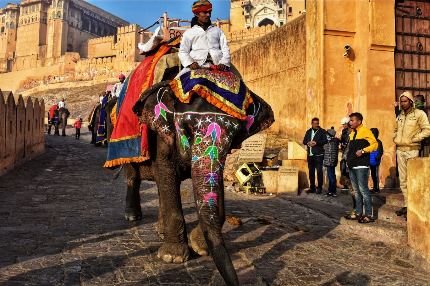 Photo of Amer fort jaipur By A Walking Wanderer