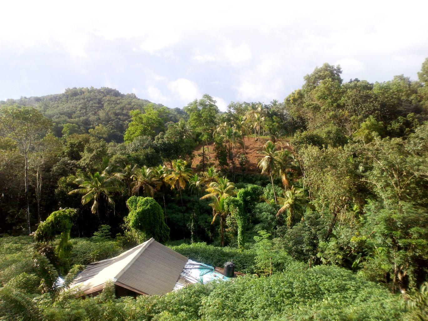Photo of Peyad - Vellanad Rd By Ankit Paul