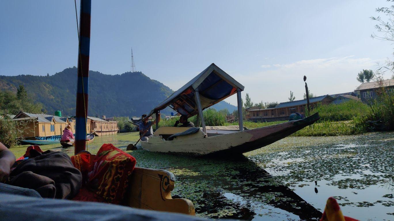 Photo of Dal Lake By Surya sengupta