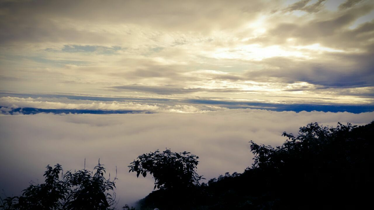 Photo of Mussoorie By Dimple Mago