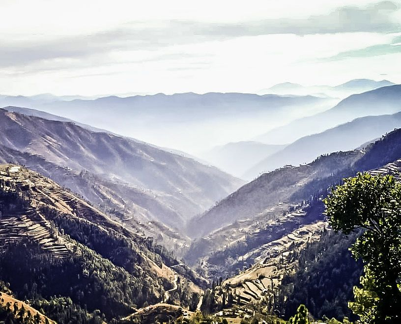 Photo of Chail By Kunal Jain