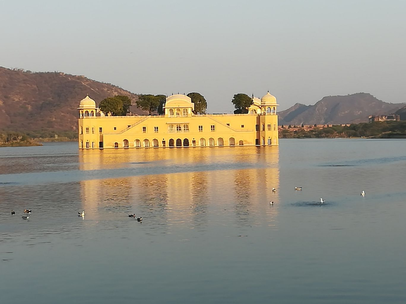 Photo of Jal Mahal By Dilip2all
