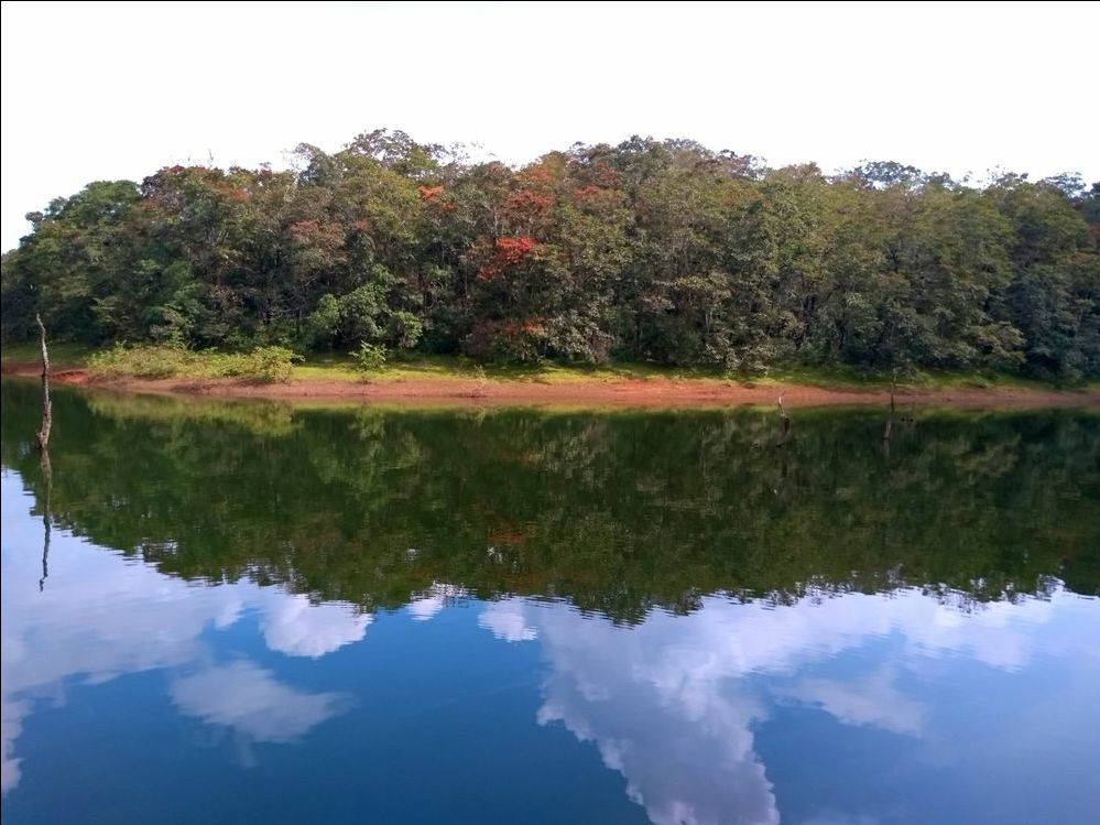 Photo of Periyar Tiger Reserve By aaryesdee
