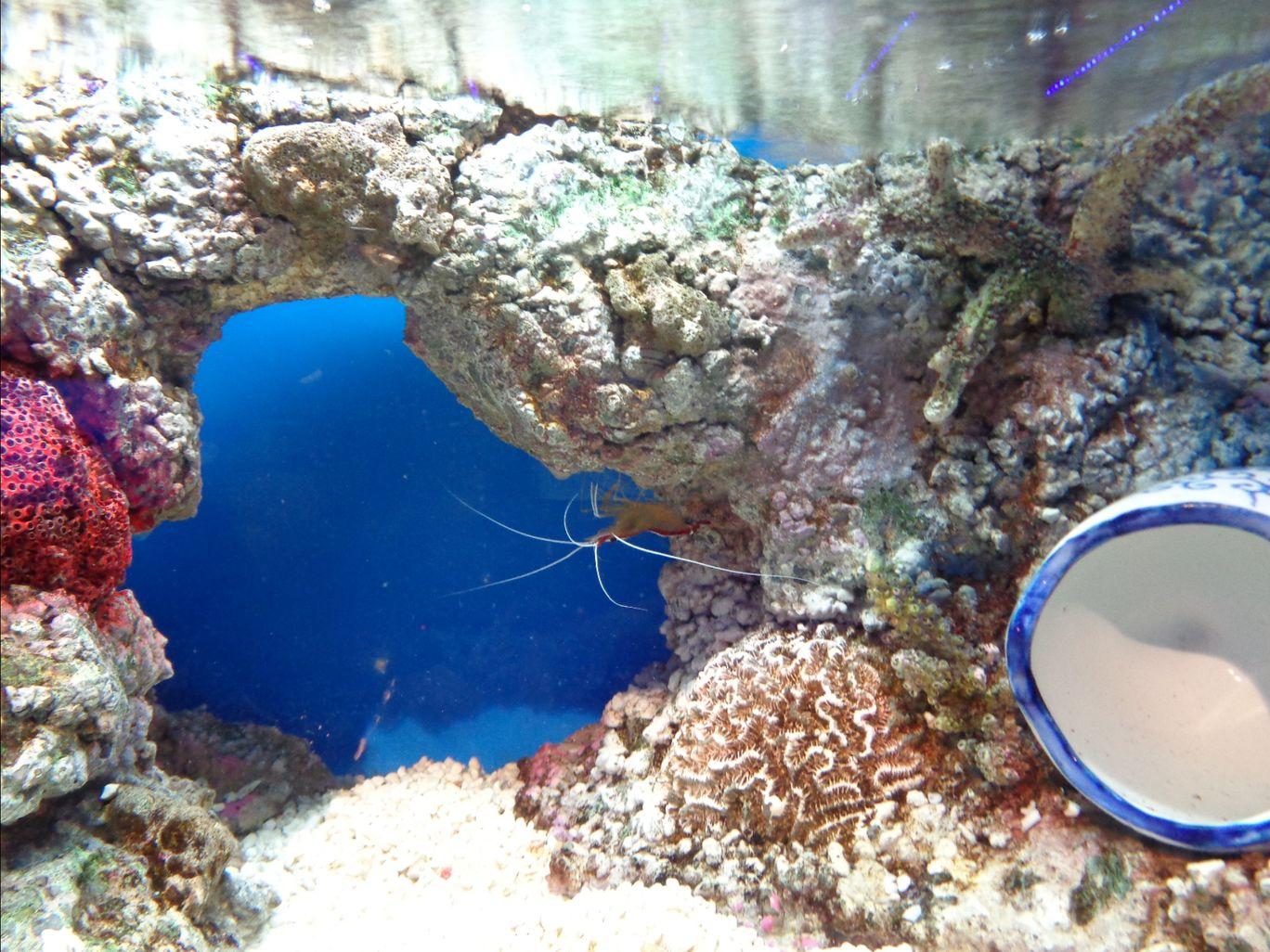 Photo of Aquaria KLCC By Kannan