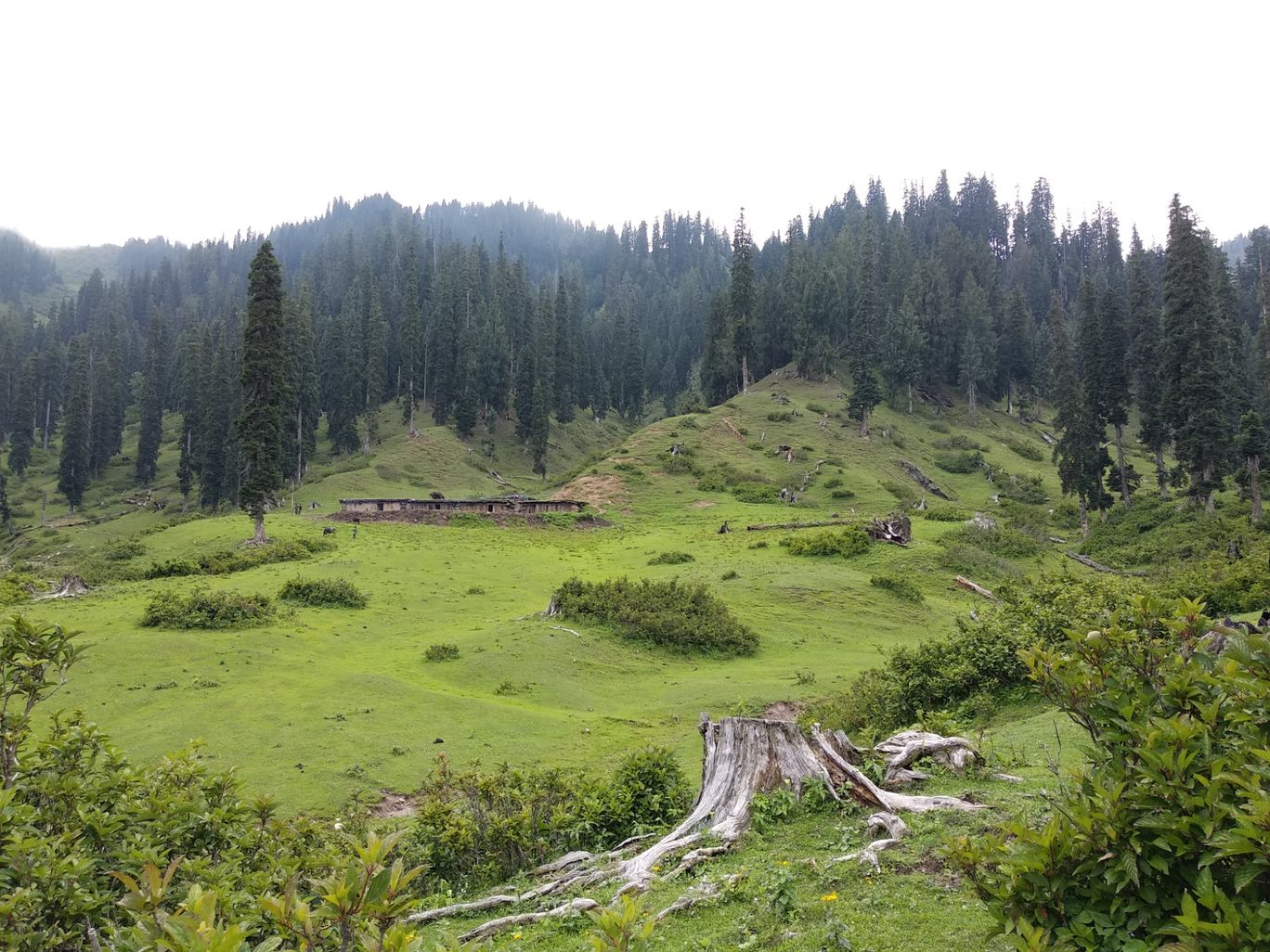 Photo of Jammu and Kashmir By Umair Mir
