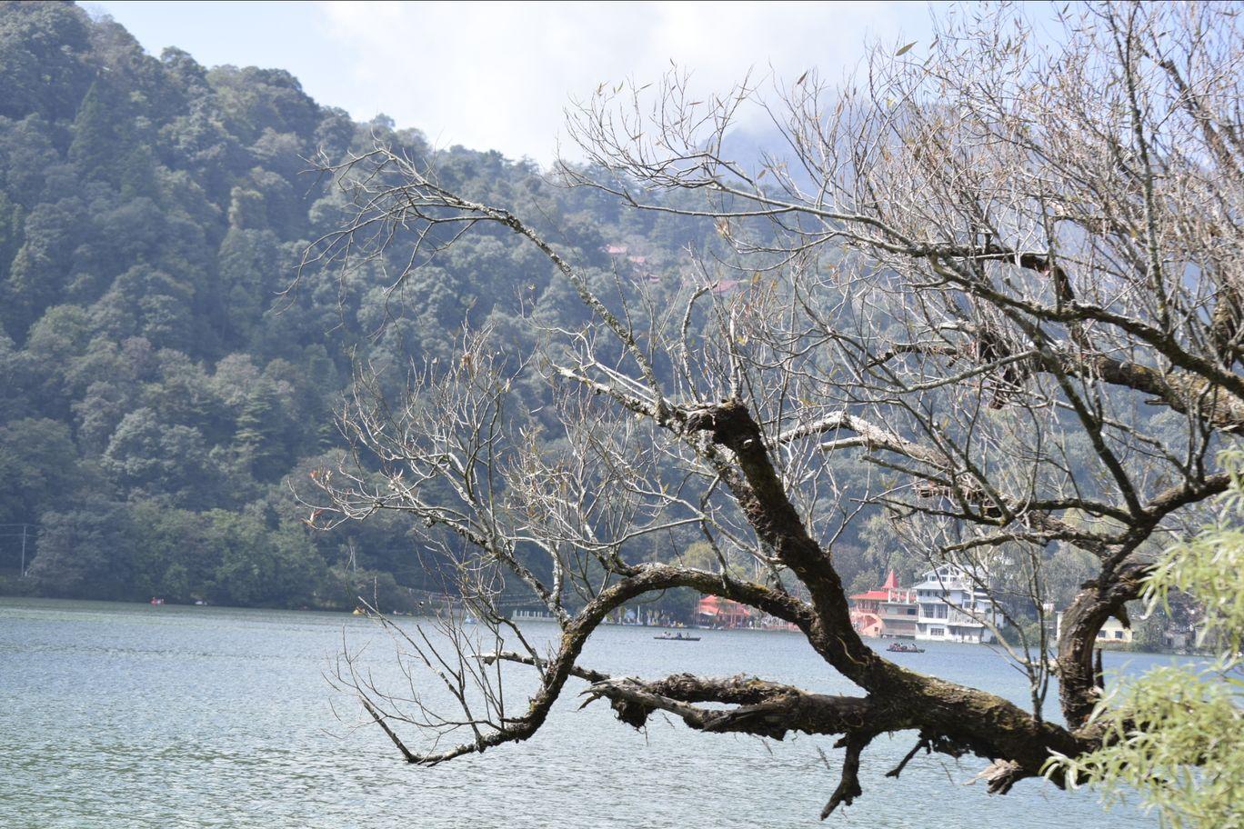 Photo of Nainital By Swaraaj