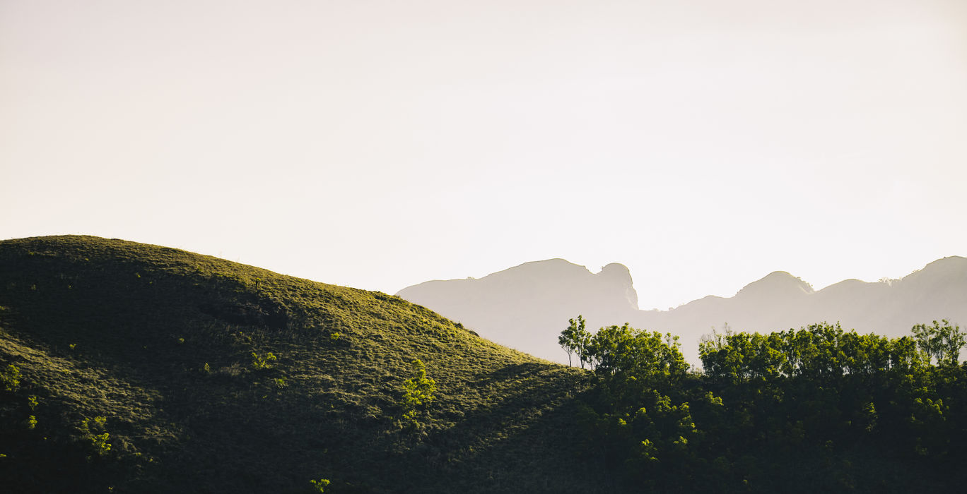 Photo of Ponmudi Hill Station By The Procaffeinator