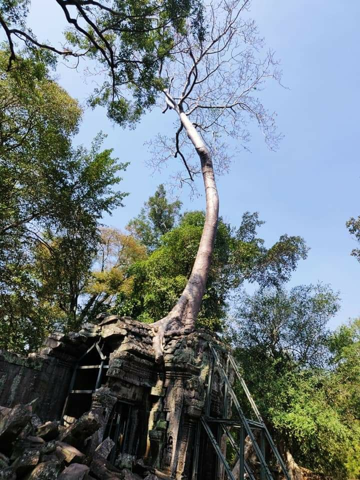 Photo of Cambodia By Sunita Biddu