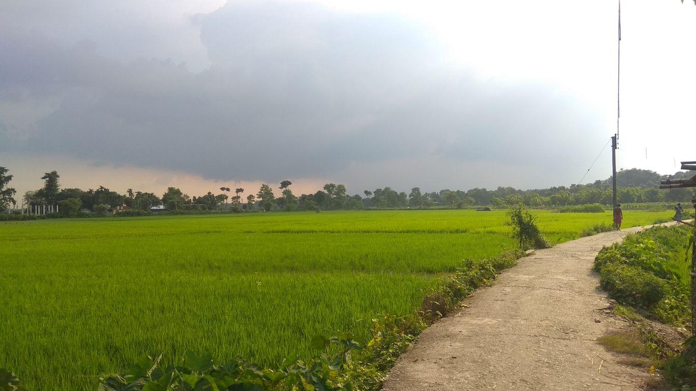 Photo of Adhikari By sagar kumar das