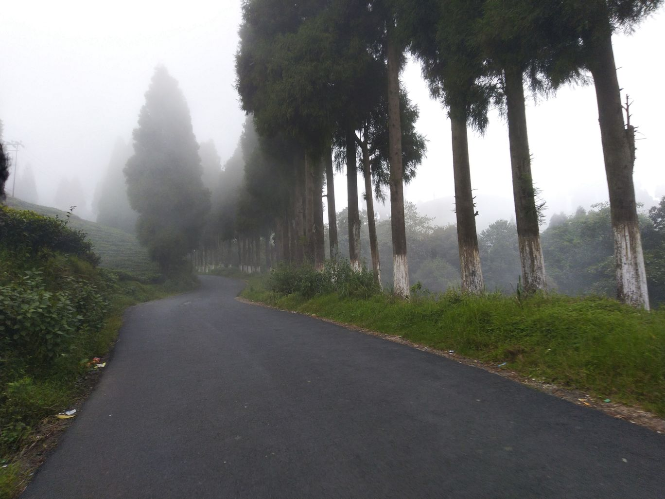 Photo of Unnamed Road By Sunil Aarya