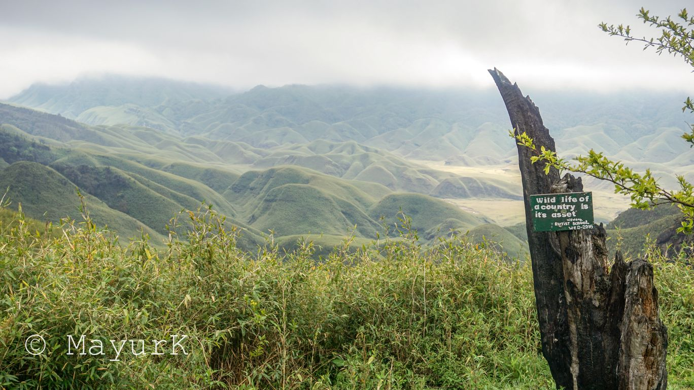 Photo of Dzükou Valley By mayur saikia
