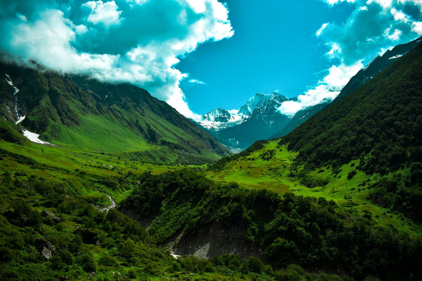 Photo of Valley of Flowers National Park By Pritam Patel