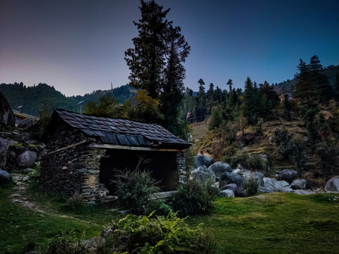 Photo of Bagsiad By daksh thakur