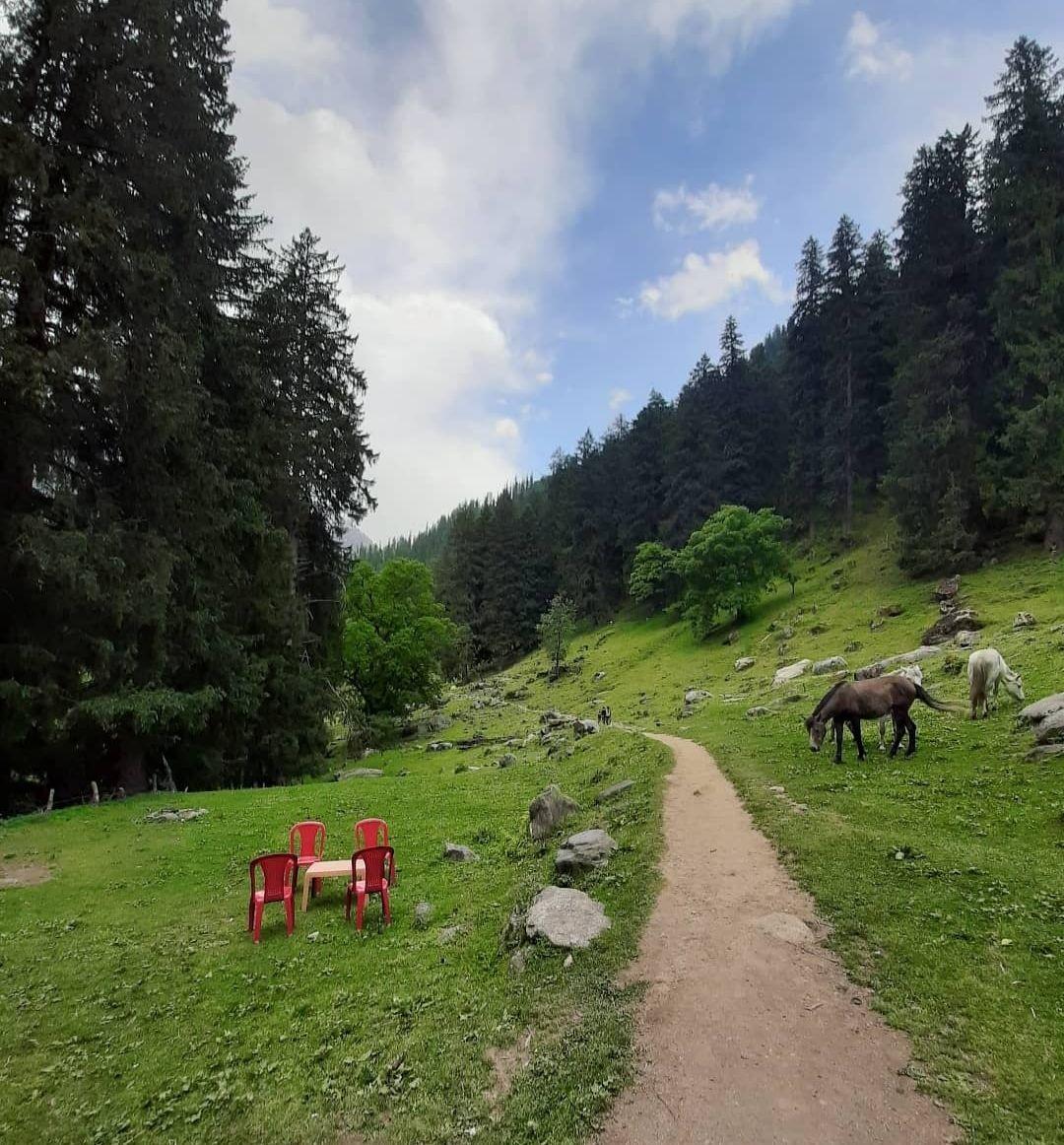 Photo of Kheerganga Trek By Ankit Sharma